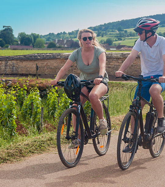 location vélo ballade dans les vignes